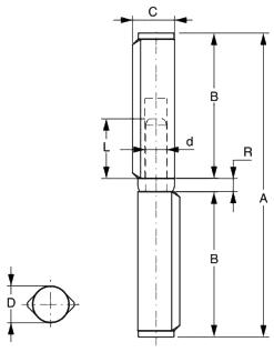 Balama sudabila pe bucsa FAAC 570.100