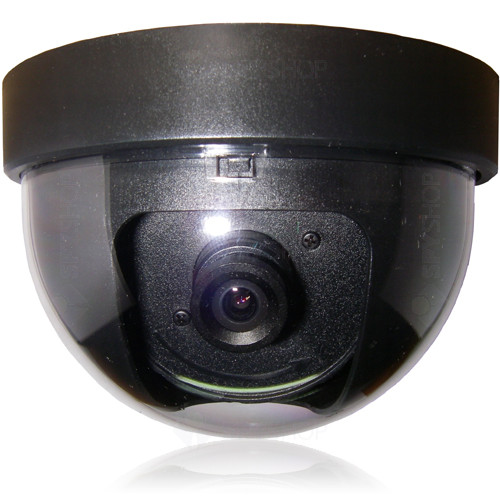 Camera de supraveghere dome D-6051