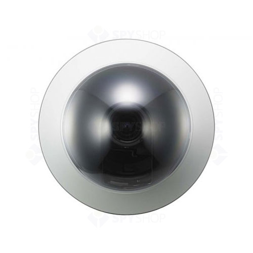 Camera de supraveghere dome Sony SSC-N24