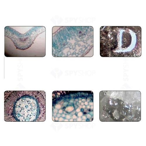 Kit Microscop digital Celestron 600x