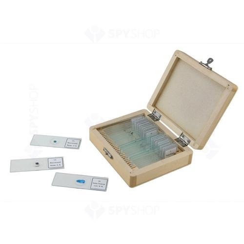 Set 25 preparate pentru microscop Celestron 44410